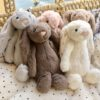 lapin groupe